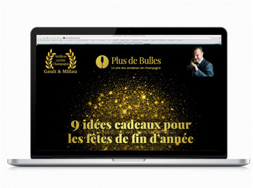 web design freelance emailig newsletter Plus de bulles
